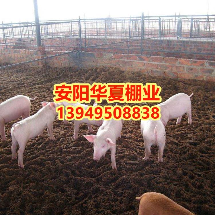 养猪大棚 养猪大棚价格 建设养猪大棚