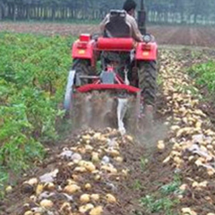 富强 手扶车带动地瓜土豆收获机 薯类收获出土机
