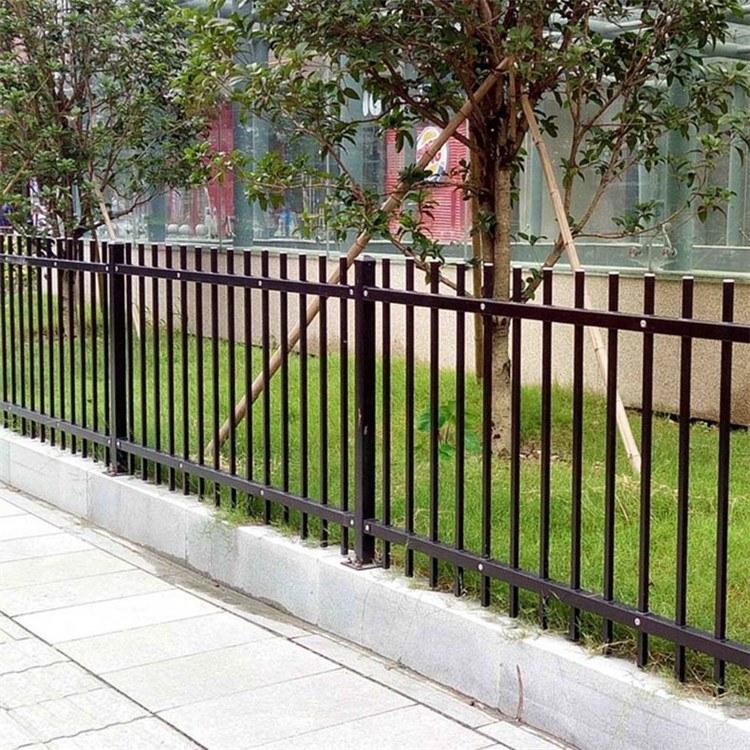 市政花园草坪围栏 小区道路绿化带护栏 园艺护栏