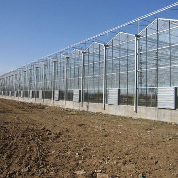 温室工程 智能温室工程 温室大棚工程骨架