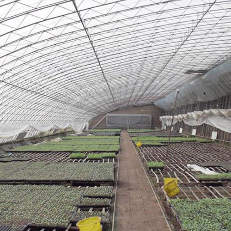 单体蔬菜大棚骨架 农用大棚骨架 草莓大棚骨架 温室大棚骨架批发