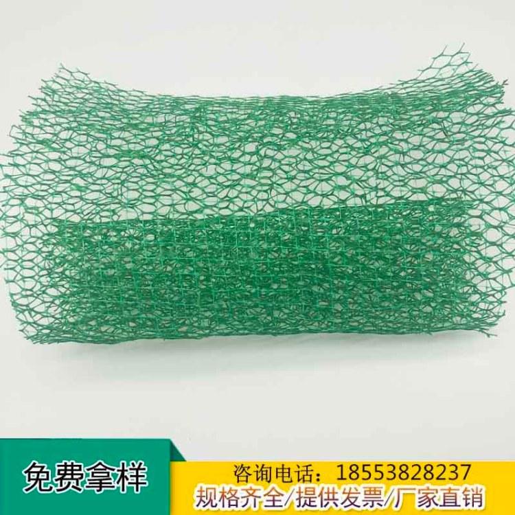腾路EM3三维土工网垫厂家 三维植被网护坡施工报价