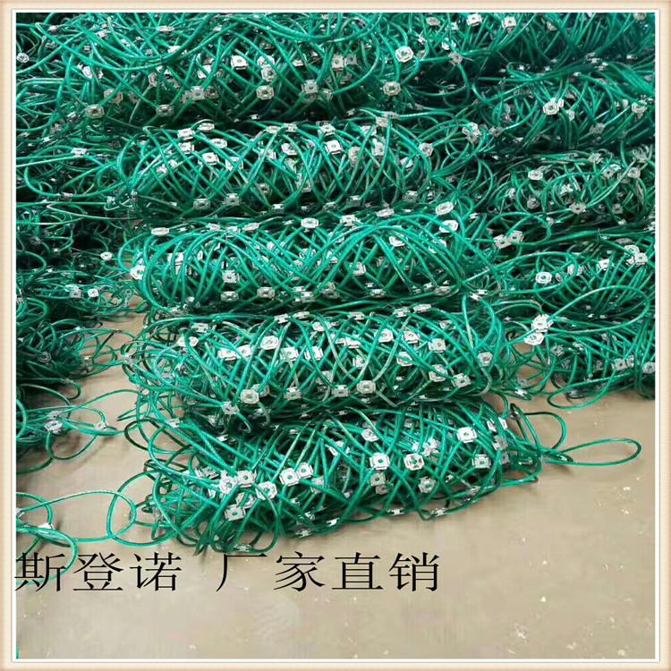 帘式边坡防护网 缠绕型边坡防护网 工程防护网斯登诺长期供应