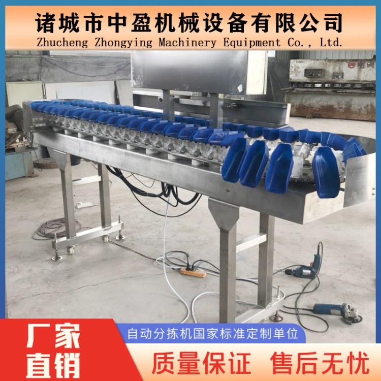 厂家直销中盈 自动分级机 重量分选机 鸭翅称重分拣机