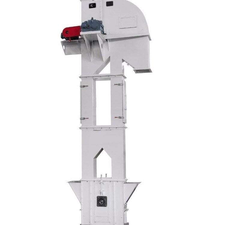 链式垂直提升机 双链条 TG系列钢芯胶带斗式提升机 不锈钢料斗耐磨耐腐蚀
