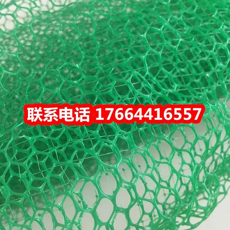 三维植被网护坡厂家 三维固土网价格