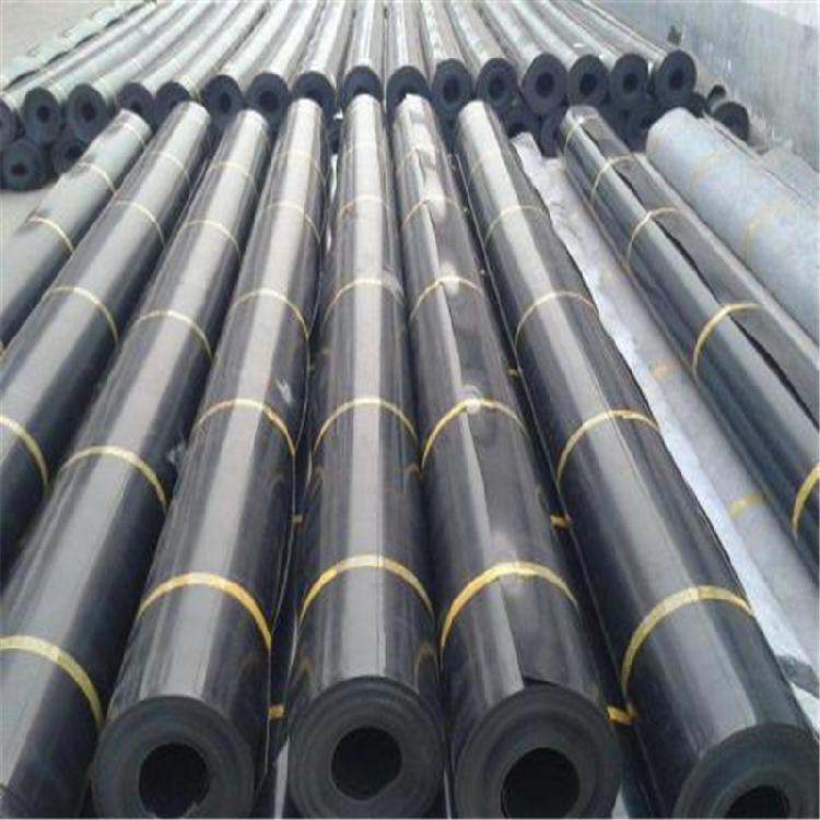 土工膜抗老化耐腐蚀土工膜厂家直销质优价廉土工膜