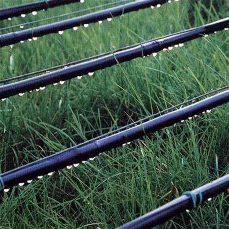 滴灌管 成都滴灌设备厂家 智雨节水灌溉 滴灌设备批发