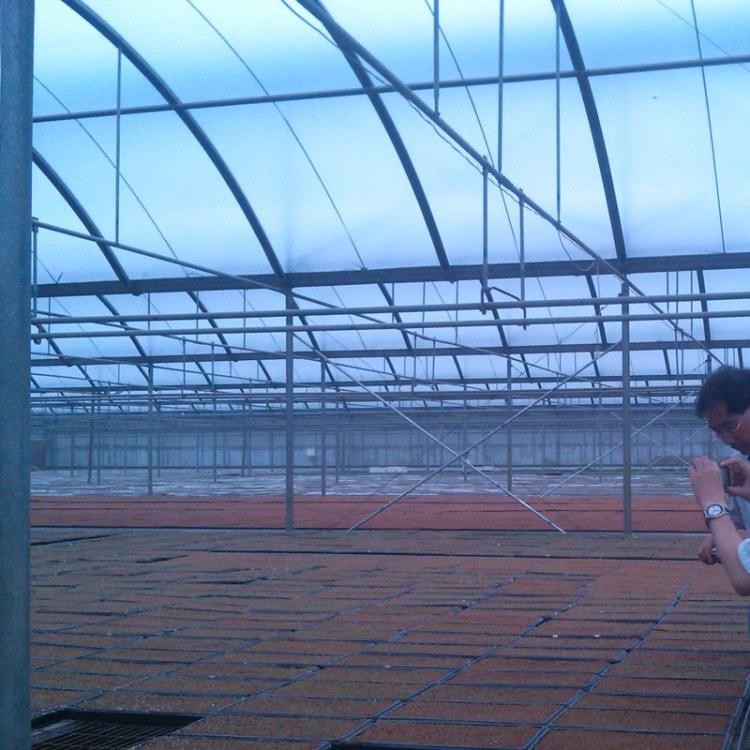 王孟农业 厂家定制 C型温室骨架 新型养殖大棚温室 大棚骨架