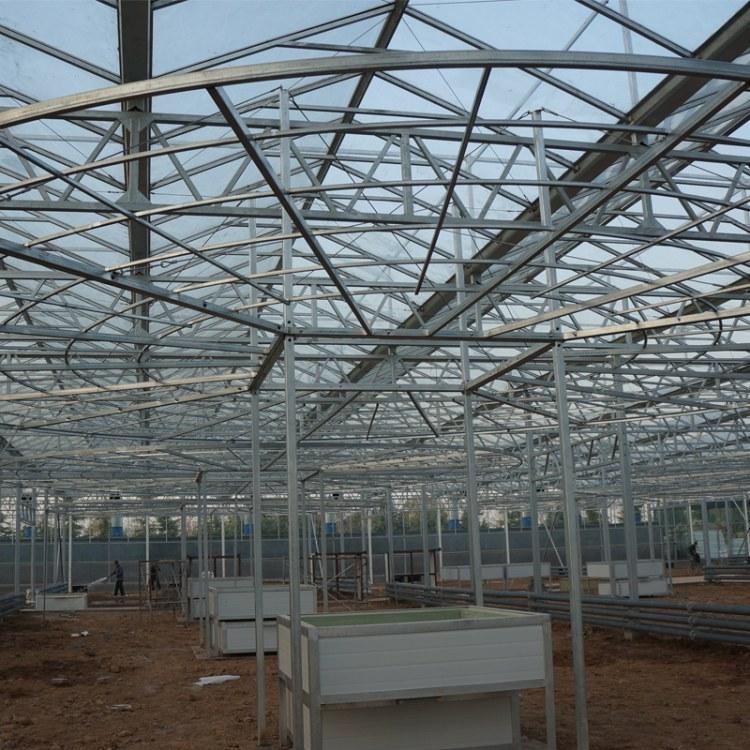 蔬菜大棚 单体钢管大棚草莓养殖农业温室薄膜大棚骨架厂家定制
