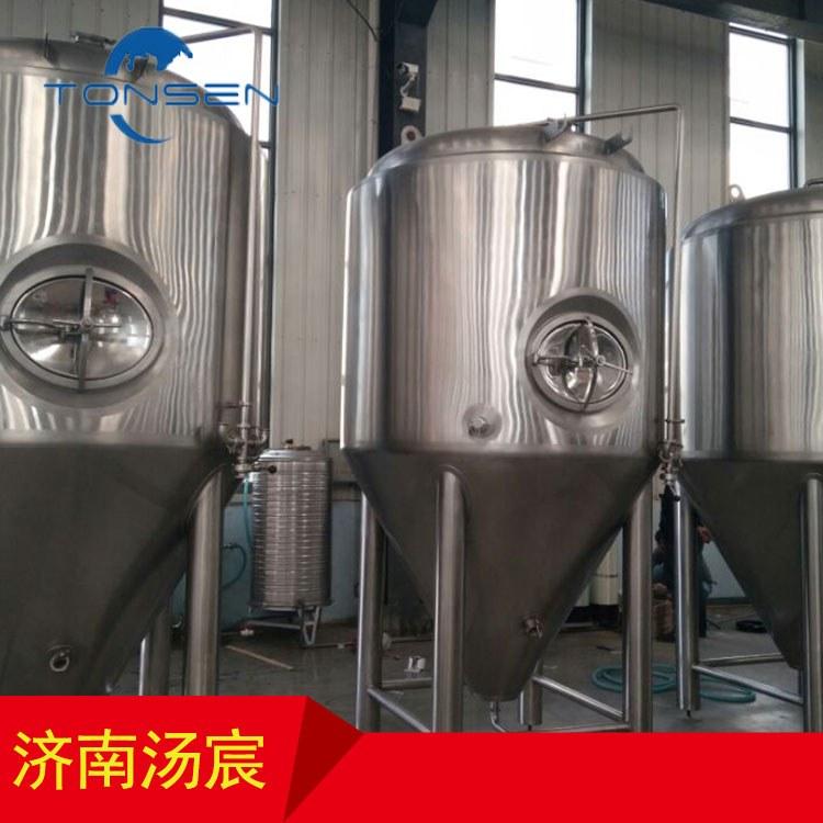 汤宸定制300L小型啤酒设备 啤酒屋项目 加工定制 家酿啤酒设备