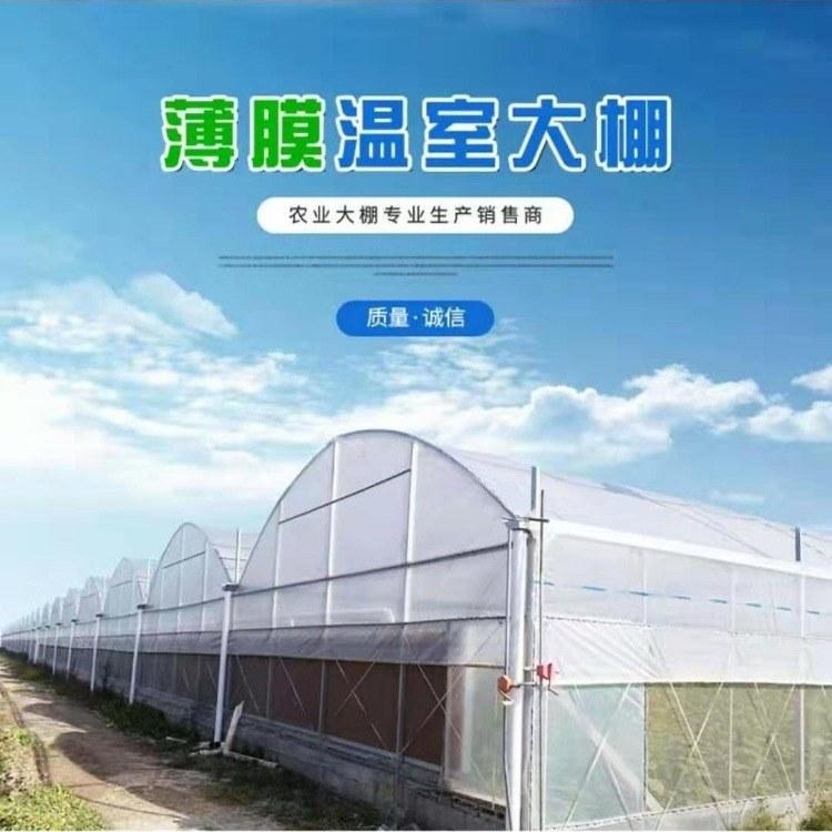 温室大棚 温室大棚造价 新型温室大棚