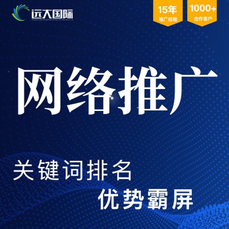 深圳网络推广公司  专业网站建设/网站优化 周期短 质量高