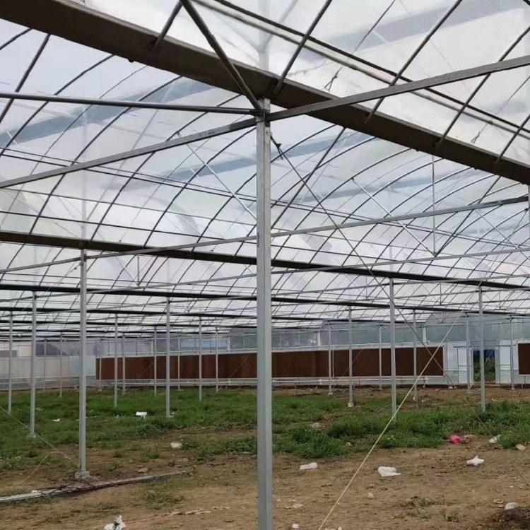 文洛式玻璃温室价格玻璃温室大棚安装厂家