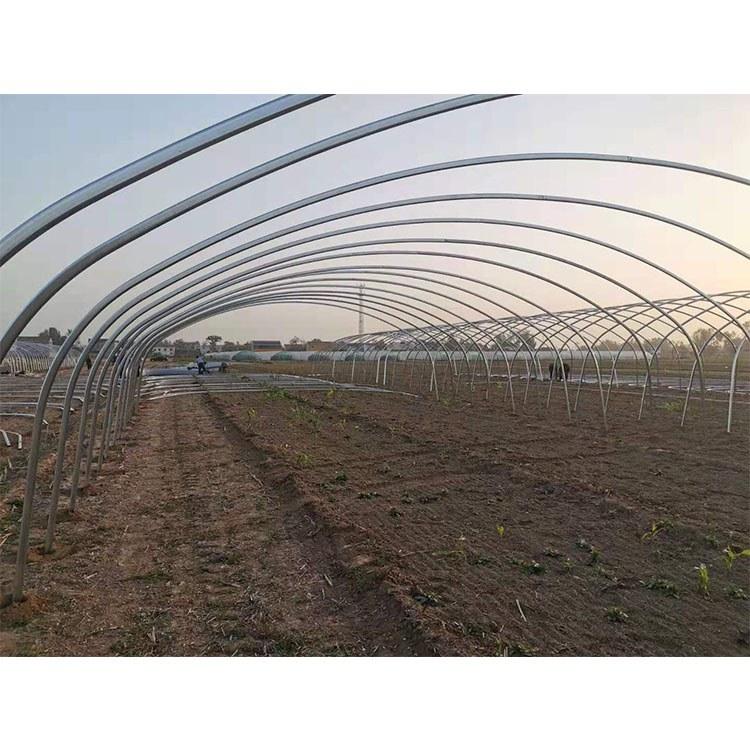 连栋薄膜温室大棚工程_安装建设_草莓种植大棚_品质优良_厂家推荐