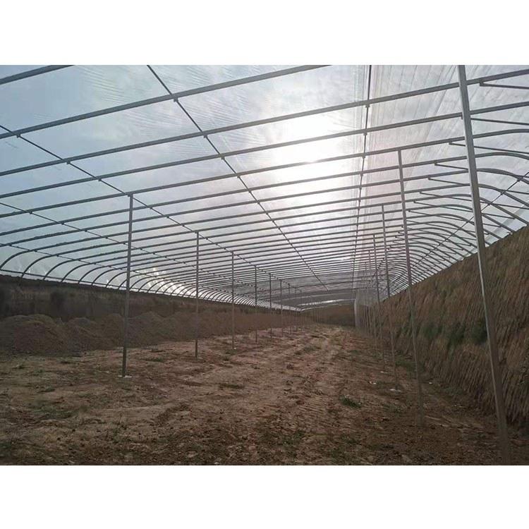 连栋薄膜温室大棚-维修更新-草莓种植大棚-品质保证-值得信赖
