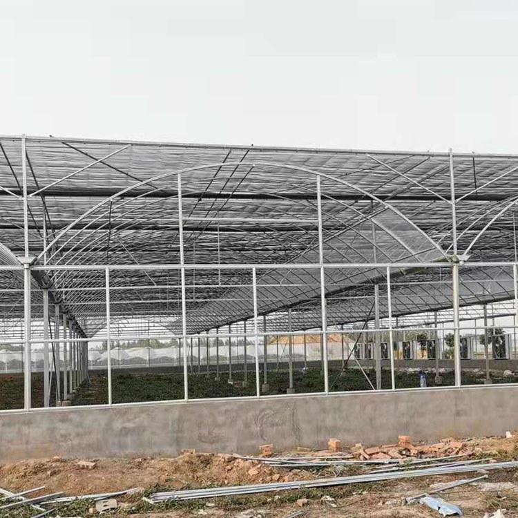 连栋薄膜温室大棚-安装建设-连栋温室大棚工程-品质保证-值得信赖