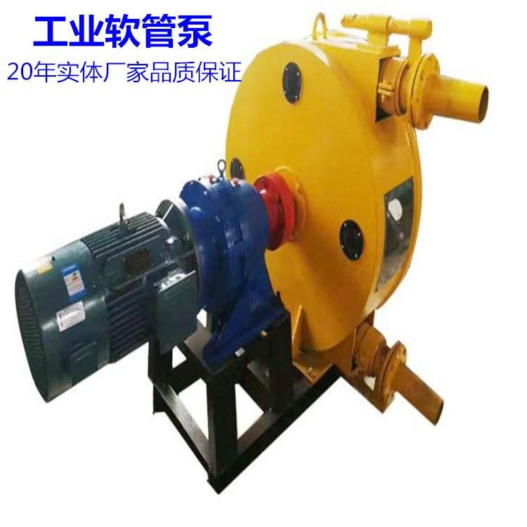 厂家直供 RGB100型 大型软管泵 大流量软管泵 高耐磨挤压泵 鑫旭重工厂家直销!
