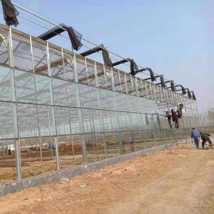 玻璃温室大棚工程 玻璃温室大棚厂