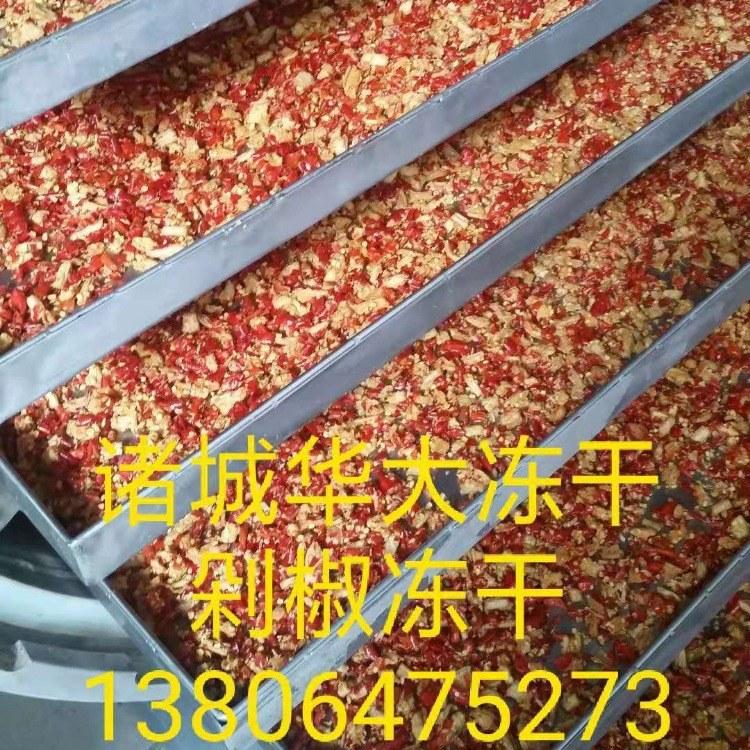 冻干机 果蔬真空冻干机 生产型冻干机厂家
