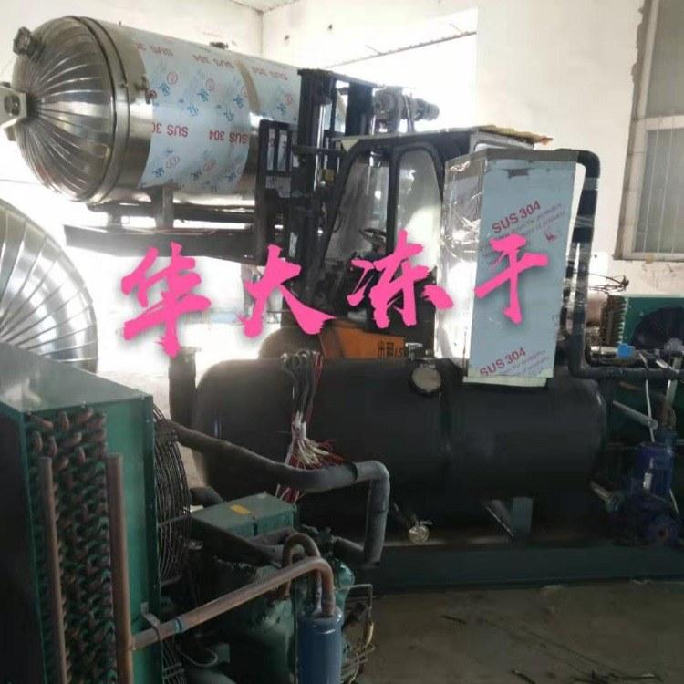 猕猴桃片冻干机 真空冷冻干燥机 全自动真空冷冻干燥机