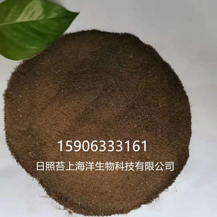 大连海参饲料原料海藻粉厂家批发 现货供应海产品饲料海藻粉