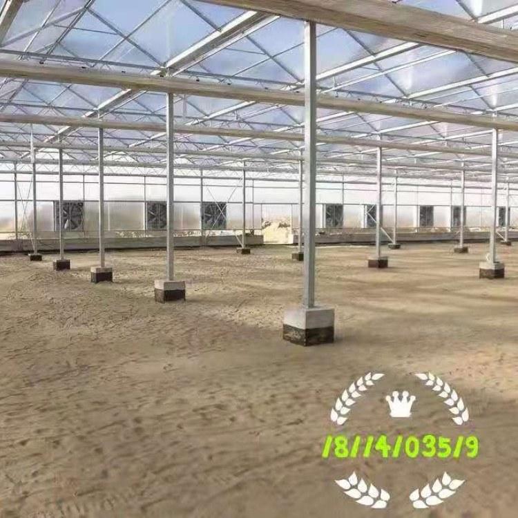连体栋大棚 蔬菜大棚 地插式大棚骨架 养殖大棚 简易钢管大棚 多肉大棚