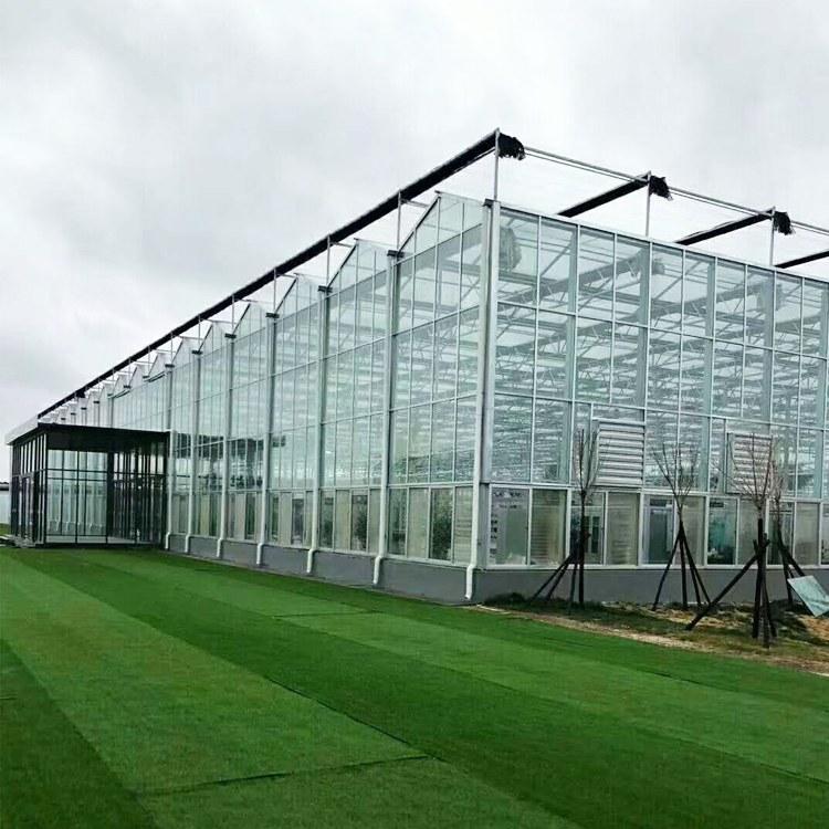 以利农业 玻璃温室 葡萄连栋大棚 现代化农业设施 山东智能温室大棚工程造价
