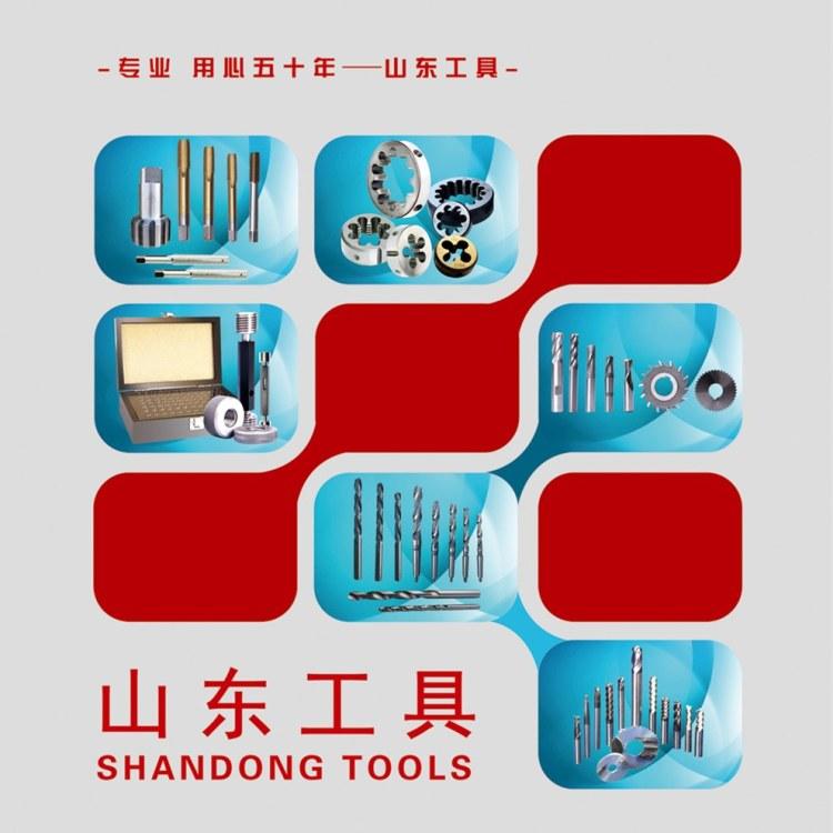 山东工具 厂家销售 螺旋槽 直槽 丝锥M10