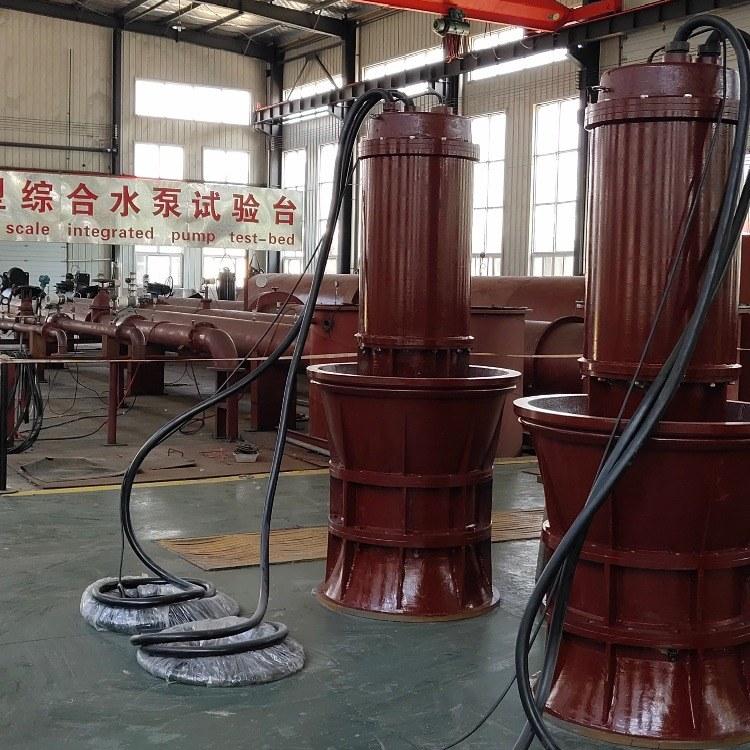 河南郑州雨季排水潜水轴流泵