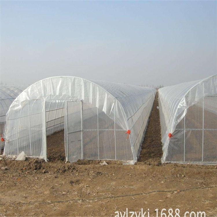 供應西藏拉薩大棚膜生產廠家直銷批發 昌度賣遮陽網塑料農用地膜電話