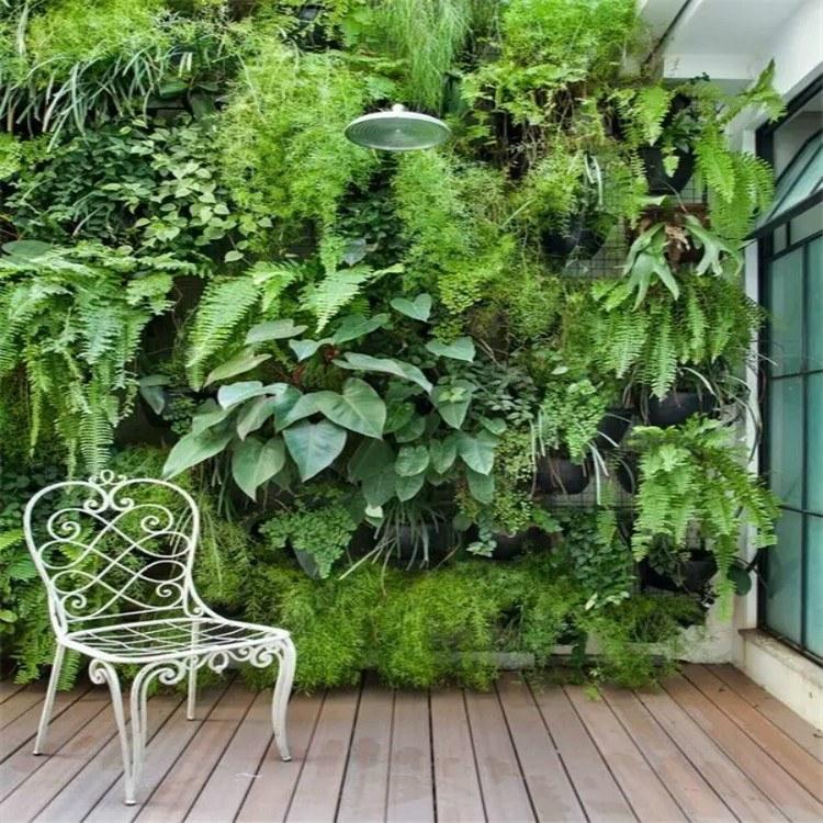 圣恩园艺 植物墙室内绿化墙立体绿化墙 垂直植物墙室内绿墙