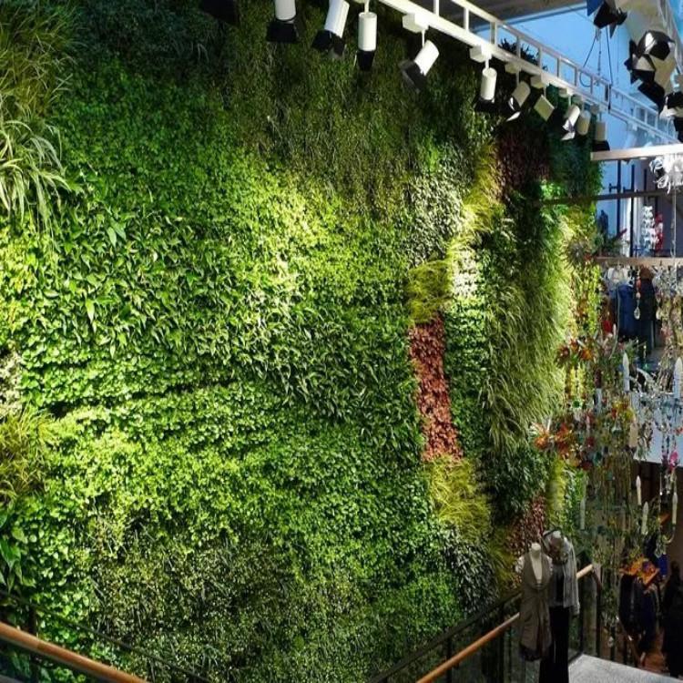 圣恩园艺 绿植墙 立体绿化墙 墙面绿化
