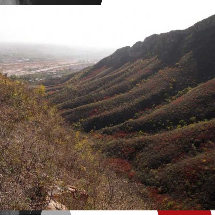 天津静海县京测科技三维激光扫描仪对地形图进行专业三维扫描测量