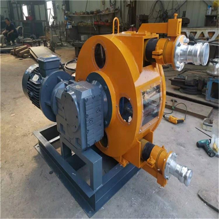 蠕动软管泵 RGB软管泵 蠕动泵转子式容积泵 更换方便无泄漏无轴封