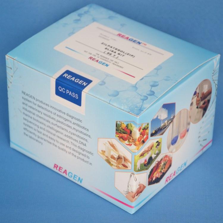 REAGEN氯霉素检测试剂盒RND99001