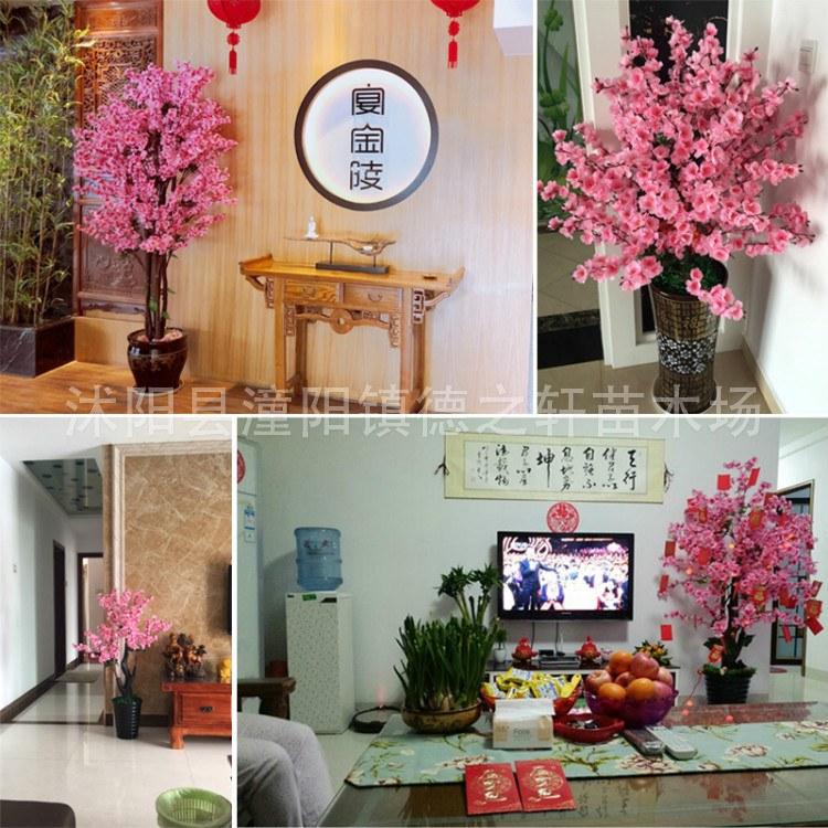 德之轩 供应商场摆设新年装饰室内许愿树拱形仿真桃花树樱花树假桃树大型酒店造景 氛围烘托