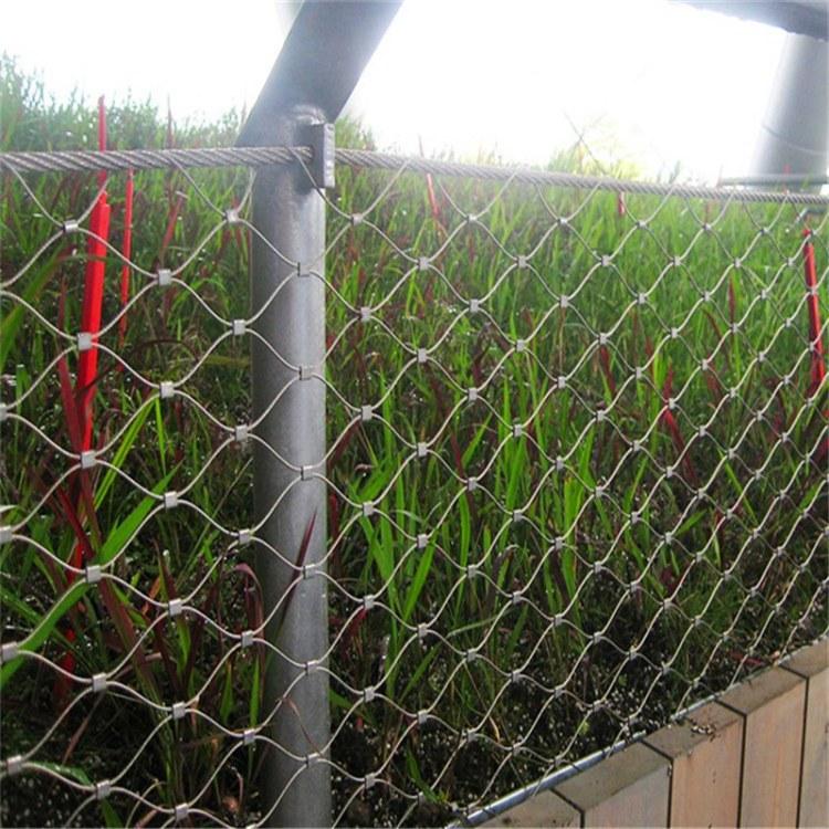 厂家直销不锈钢绳网 不锈钢环网价格专业生产定制防坠落网