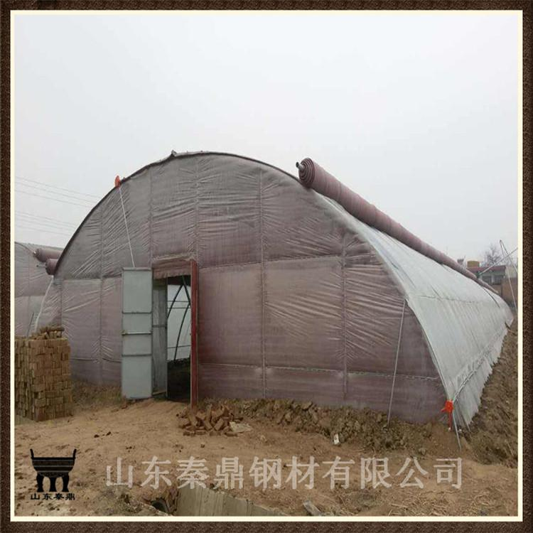 批发阳光板温室大棚 果树大棚 多种规格尺寸