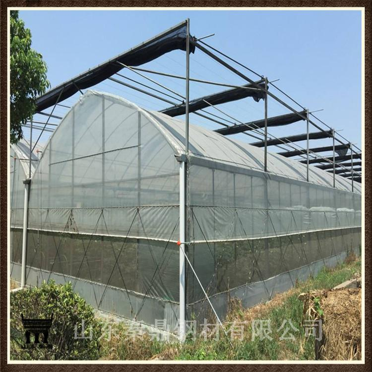 定制育苗大棚 温室大棚骨架 养殖专用
