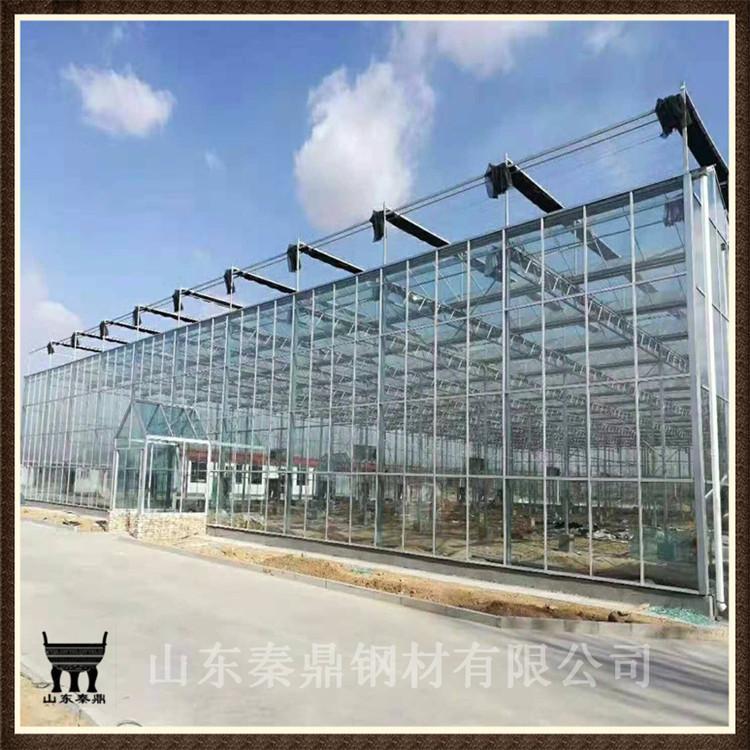 厂家批发新型大棚 温室大棚骨架 养殖专用