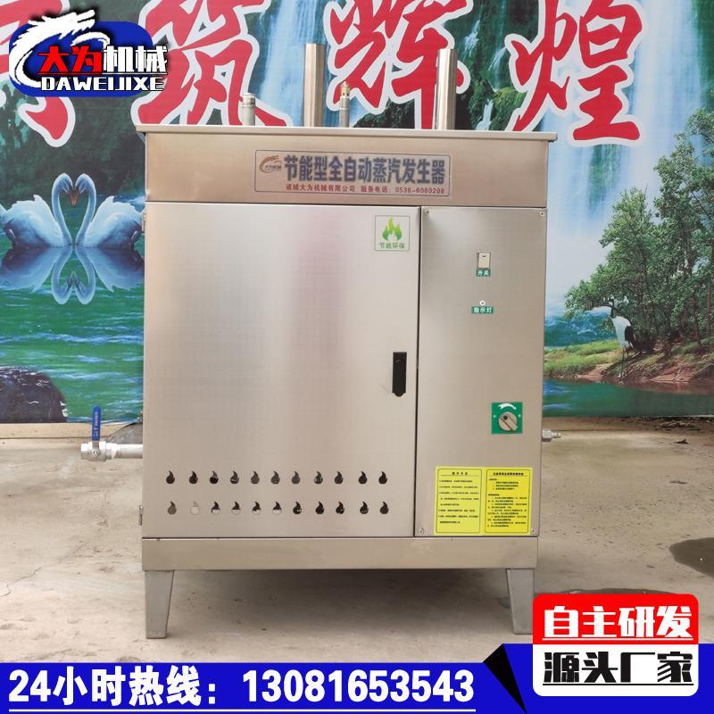 商用燃气蒸汽发生器 全自动燃气锅炉 大为供应节能型蒸汽发生器