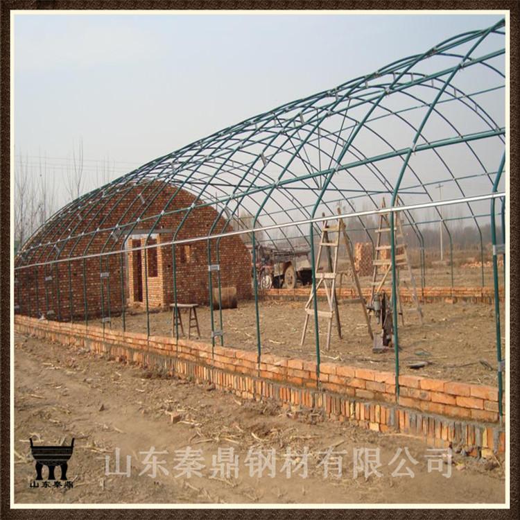厂家批发钢结构大棚 农业大棚 养殖专用