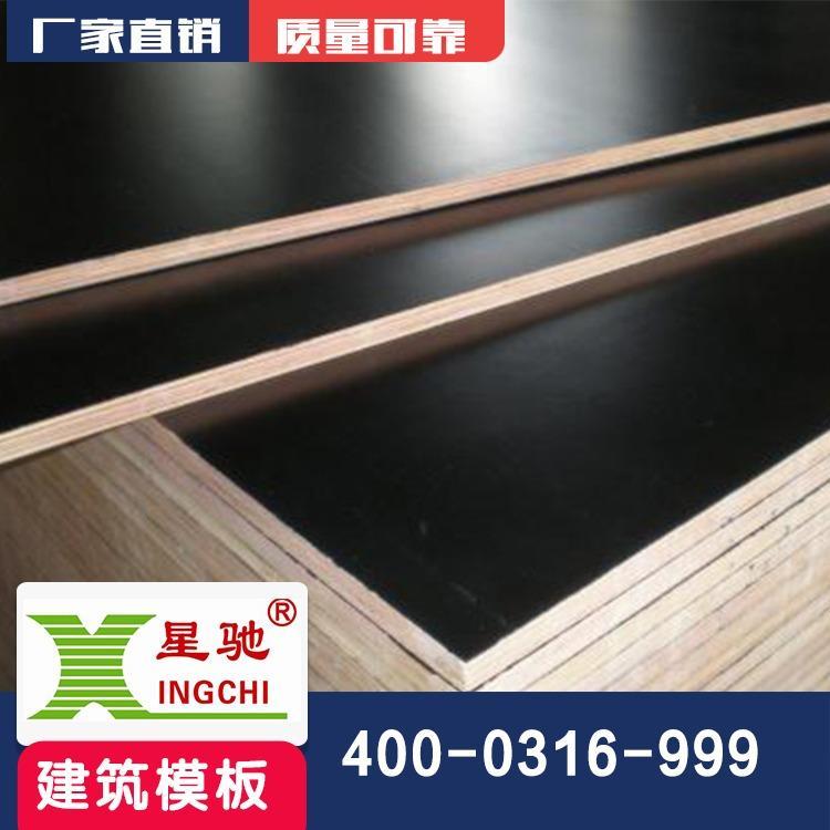 生产供应黑色覆膜板-混凝土工程胶合板价格实惠-规格齐全星驰建筑模板
