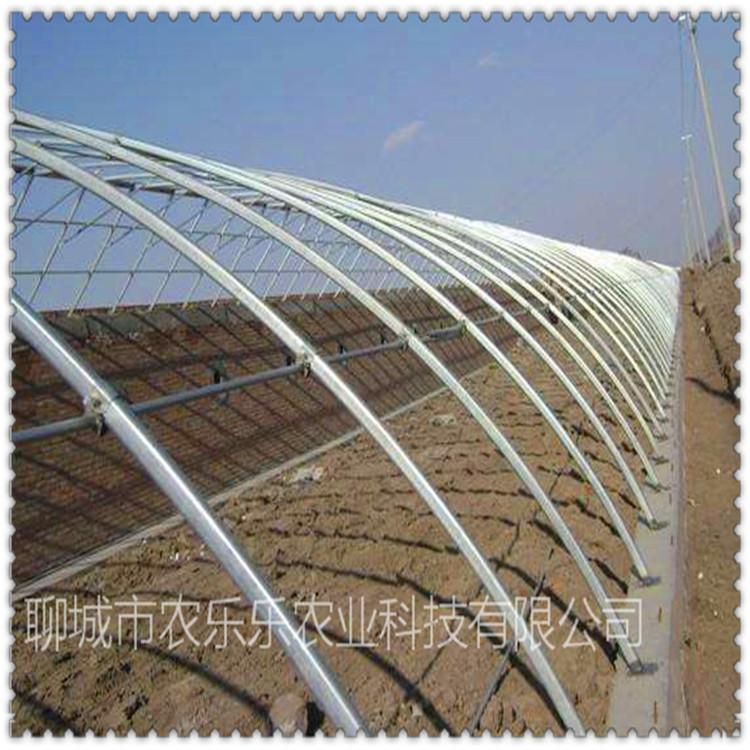 河南 玻璃温室大棚 养殖大棚 厂家现货 来电咨询