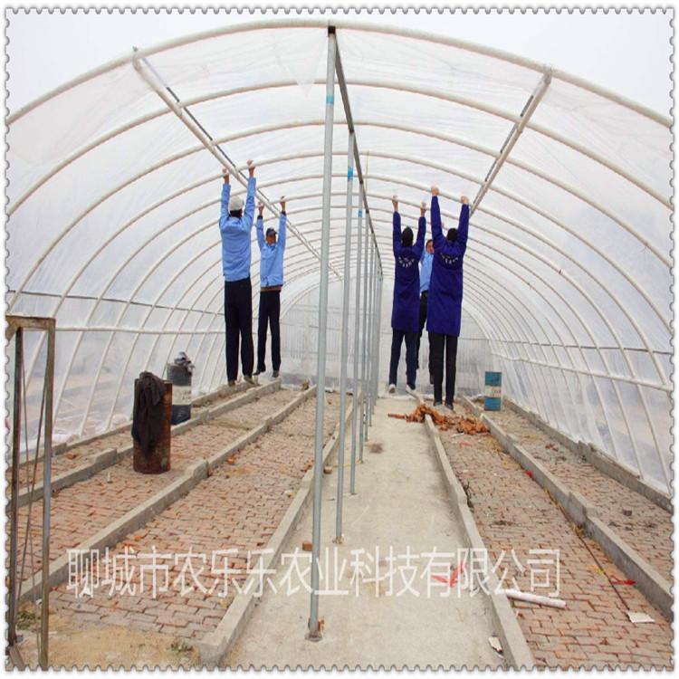 驻马店 蔬菜温室大棚骨架 家禽养殖大棚管 厂家现货 来电咨询