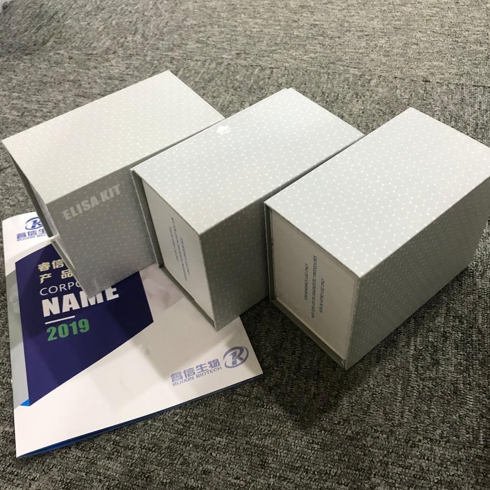 睿信生物 人抗Sm抗体测定(Sm)elisa试剂盒