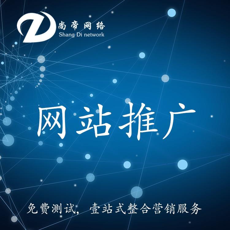 营销型网站推广 网络推广网站推广 尚帝科技 专业网站推广服务团队