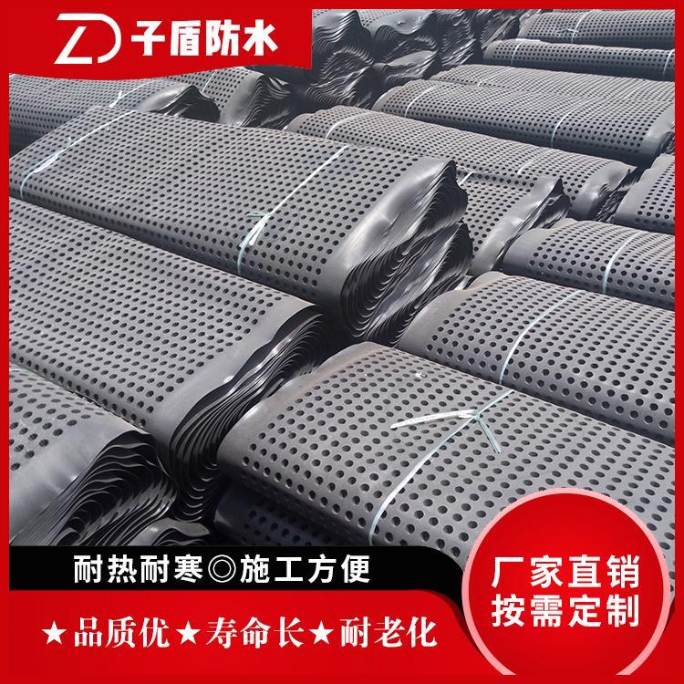 厂家大量定制排水板 塑料排水板 绿化疏水板 子盾牌