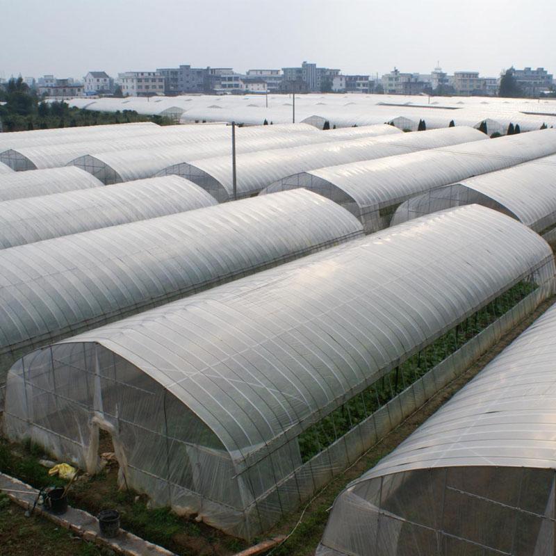 凯盈直销 种植简易抗风外遮阳连栋大棚 镀锌温室连体 农用蔬菜连栋薄膜温室大棚